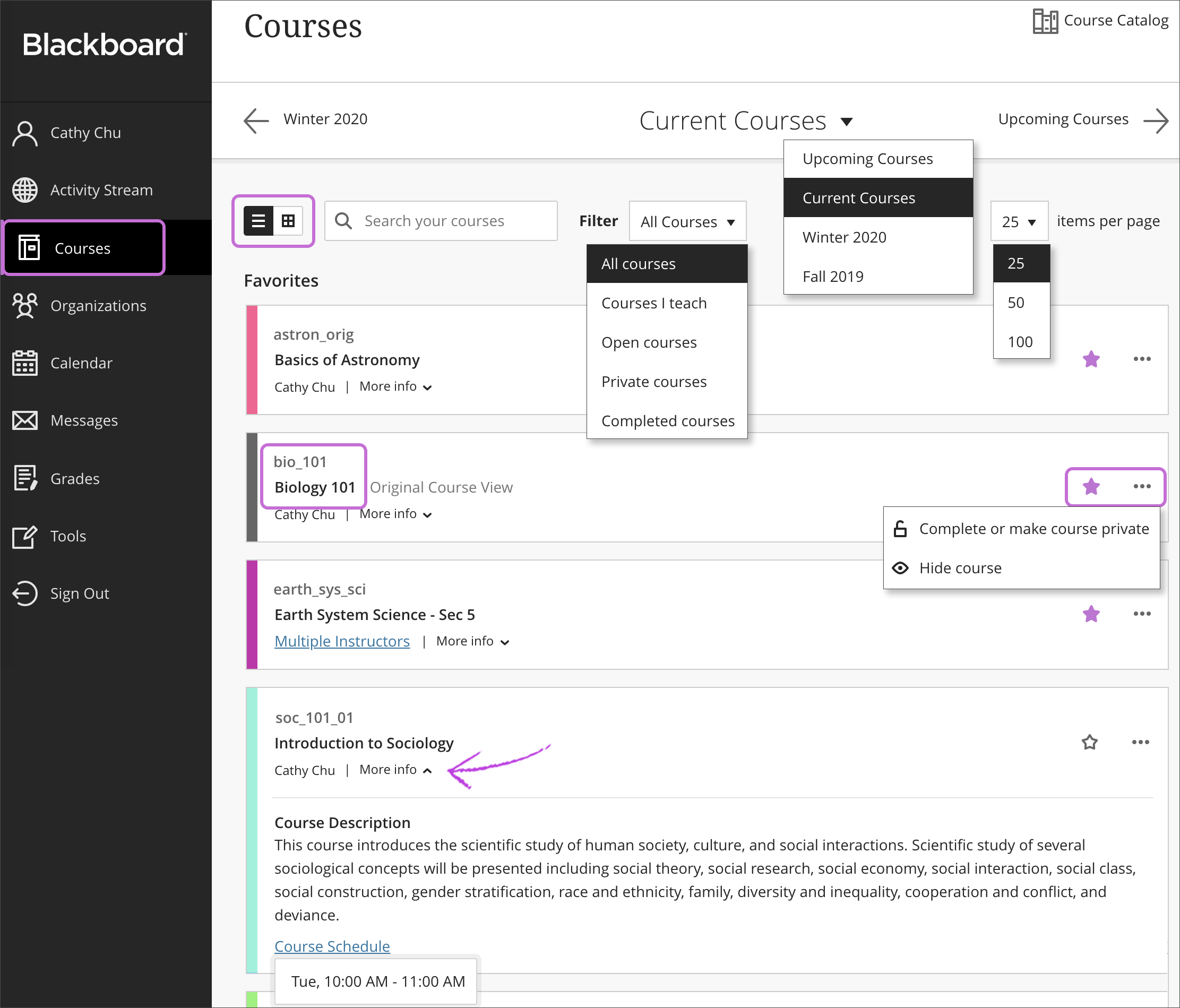 Screenshot of Courses page from Ultra Base Navigation.