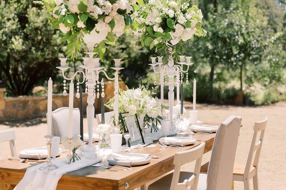 Intimate wedding reception V Party & Eve