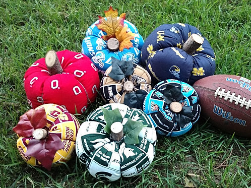 College and NFL Collegiate Collection