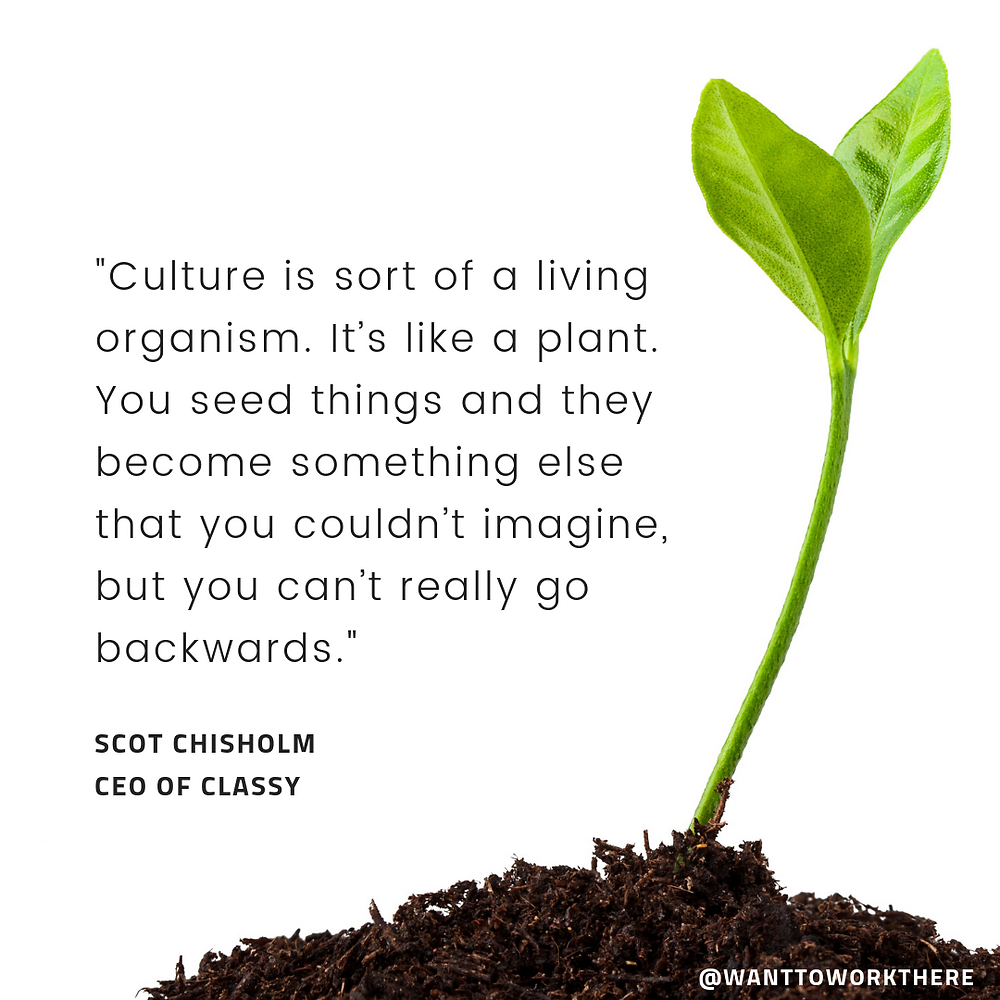 """Culture is sort of like a living organism. It's like a plant. You seed things and they become something else that you couldn't imagine, but you can't go backwards really."""