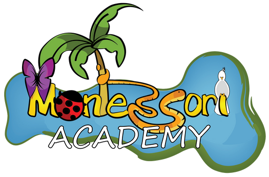 logo no background no scott blvd ACADEMY