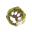 RewildingSchool_icon.png