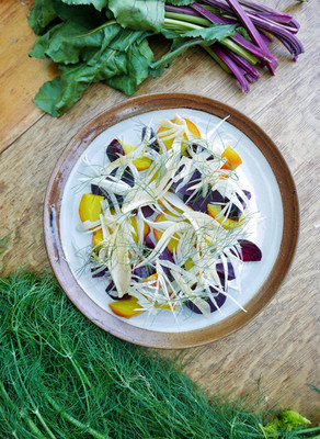 beet and pickled fennel salad