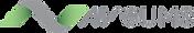 AV Gums Logo