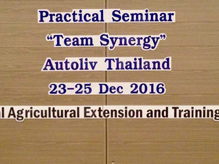 "Practical Seminar ""Team Synergy"""