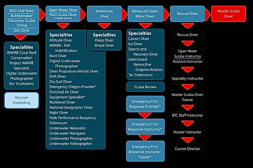 Структура курсов PADI