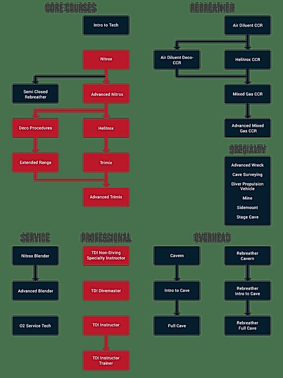 Структура курсов TDI