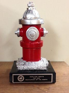 Fire Hydrant Pic.JPG