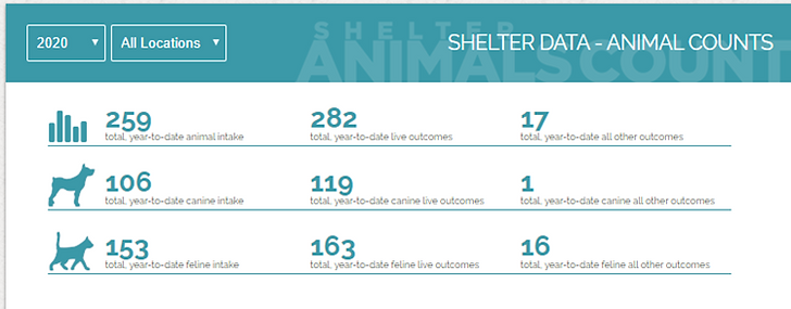 2020 Shelter Animal count.png