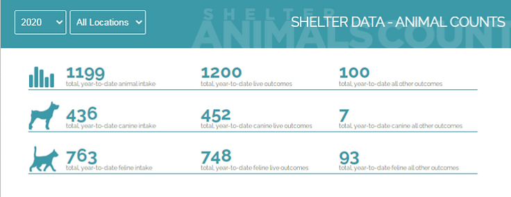 Shelter count 2020.png