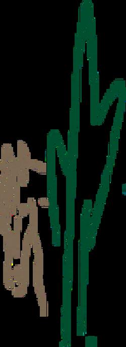 sbeec logo 10-18