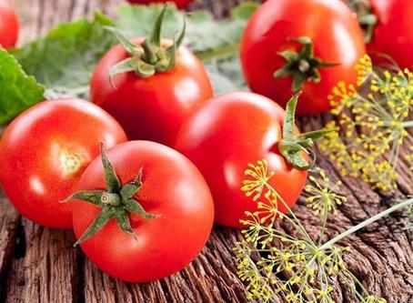 El tomate, uno de los mejores alimentos del mundo