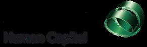 Avonova_human_capital_logo.webp
