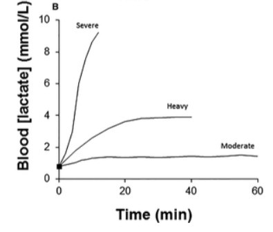 Exercise Intensity & Lactate Concentration