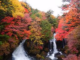 茶屋から臨む龍頭の滝・秋.JPG
