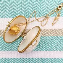 Buy online Seashells