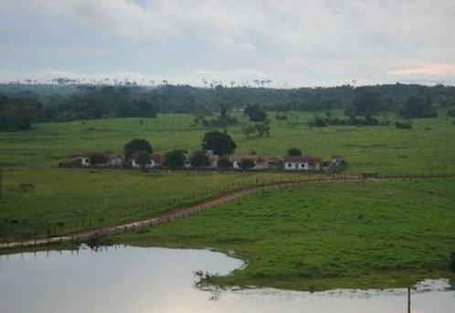 Mega Fazenda a venda no Mato Grosso MT.     US$ 2.000.000.000