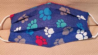 Blue Color Paws