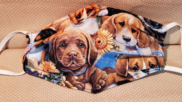 Puppy get together