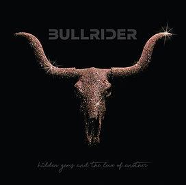 BULLRIDER COVER ART.jpg