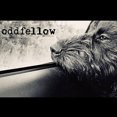 oddfellow logo 2.jpg