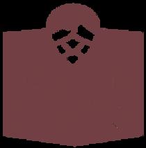 logo_009600991_2247.png