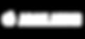 Adam Audio Logo.png
