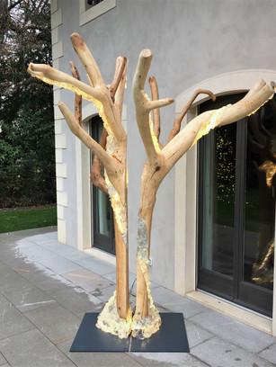 Triomphe, Double tree Geneva