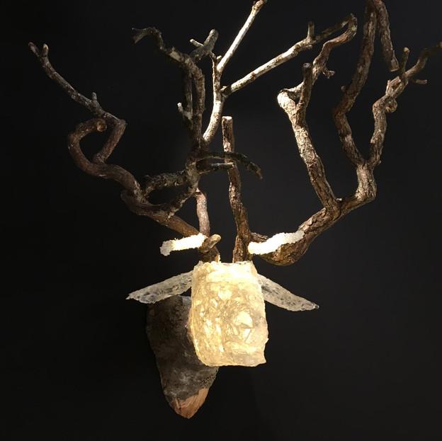 Deer, Front