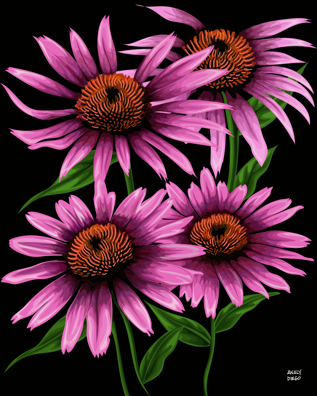 """""""FROST FLOWERS"""""""