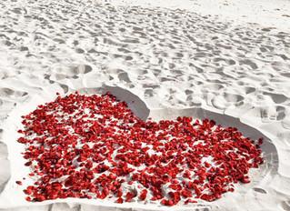 Planning a Budget Destination Wedding in Myrtle Beach?