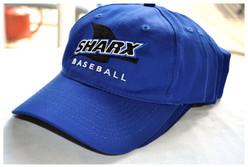 School-Sharx-Cap-Team-3-revised-border.j