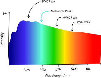 Daylight Spectrum.png