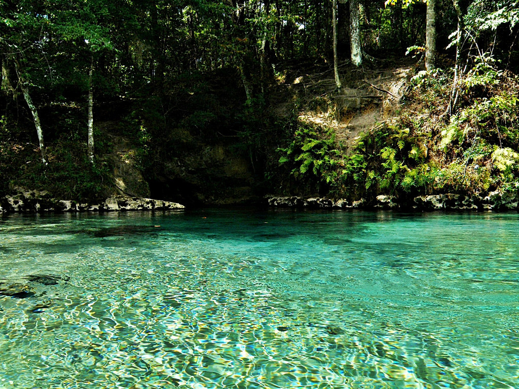 Ecofina Creek
