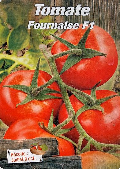 Tomate Fournaise