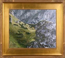 Tatrzańskie zbocza (25x30)
