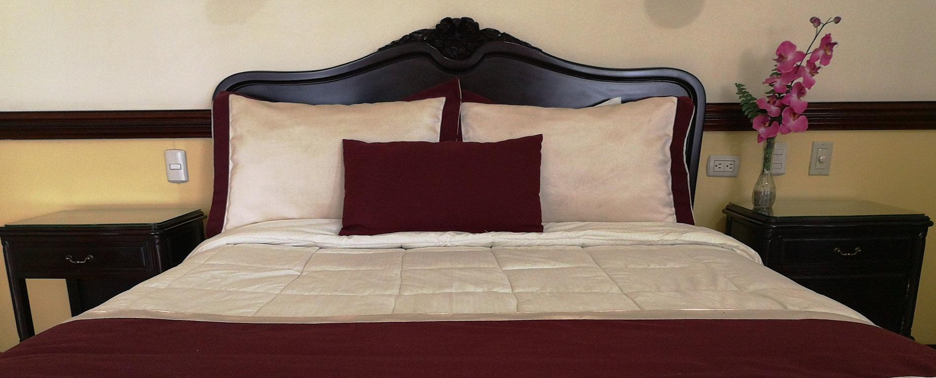 Room, Hotel Santo Tomas, San Jose, Costa Rica