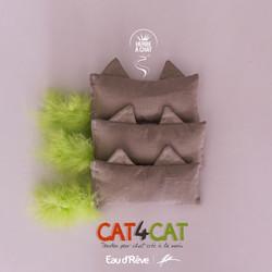 CAT4CAT-01