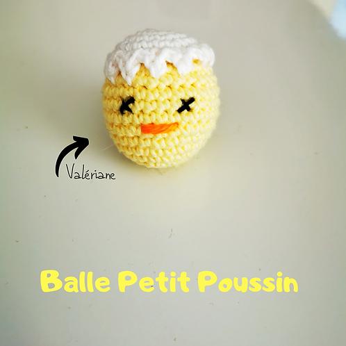 BALLE POUSSIN