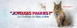 JOYEUSES FËTE ( FIN ANNEE 2014 )