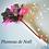 Thumbnail: PLUMEAU DE NOËL