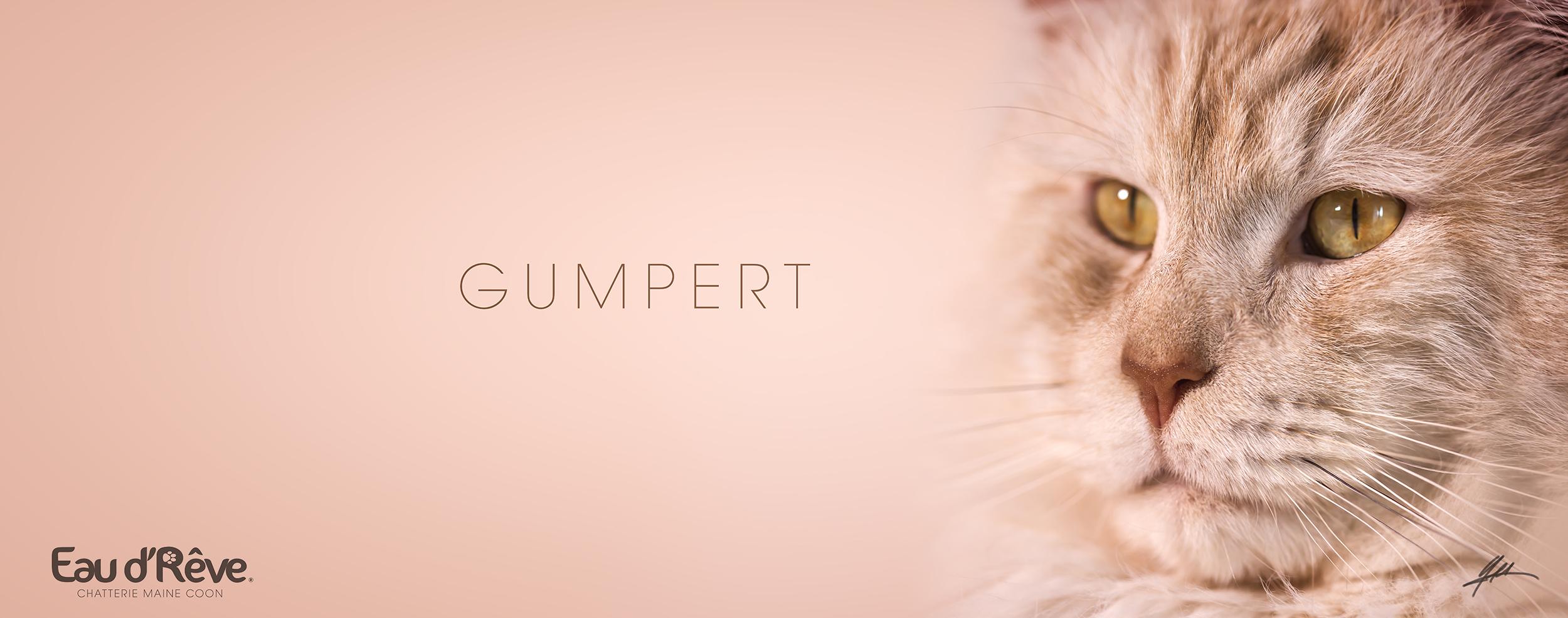 GUMPERT-01-ls