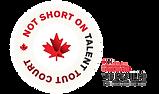 NSOT 2020 X telefilm-logo.png