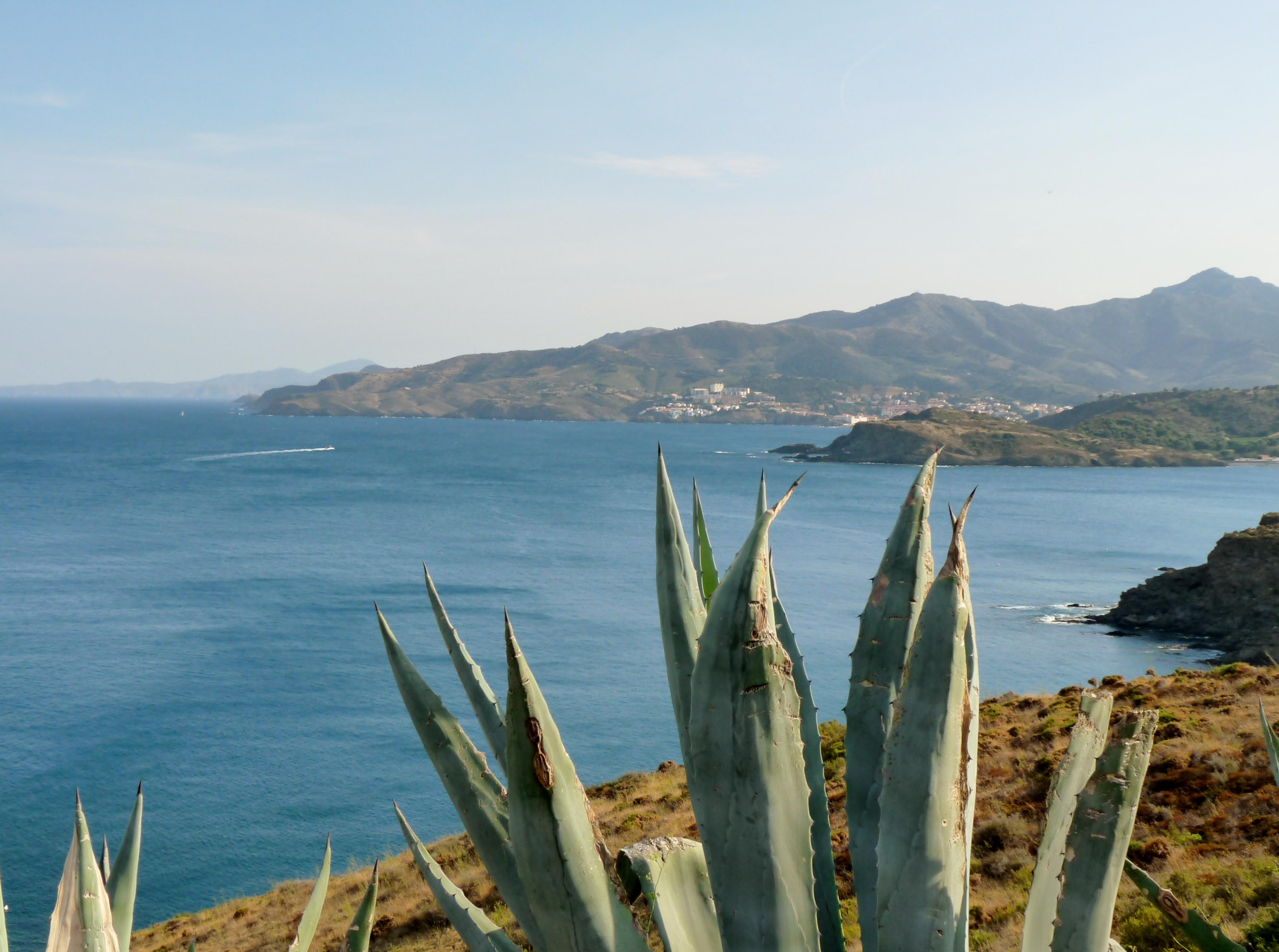 Vue de Banyuls sur mer