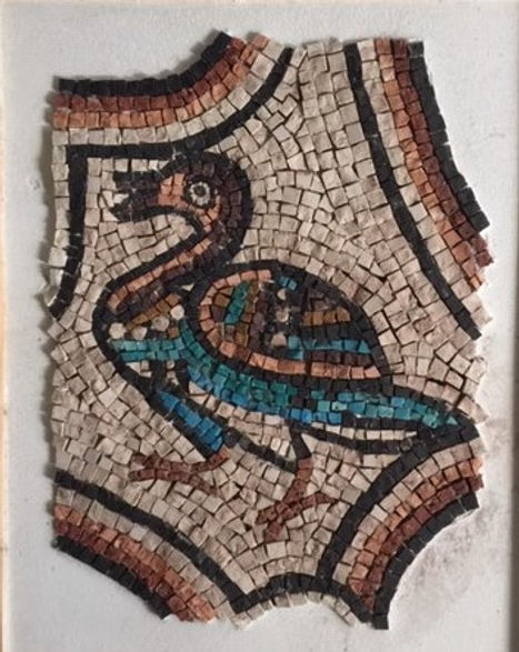 Ravenna Duck
