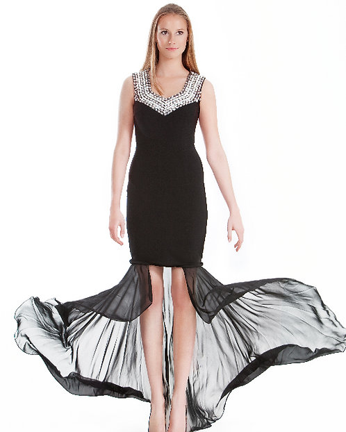 Long Black Dress with Shades of Silver Crystals