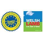 WelshLamb.jpg
