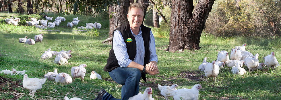 MtBarker_chicken.jpg