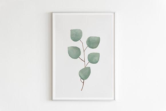 plant-leaves-bright