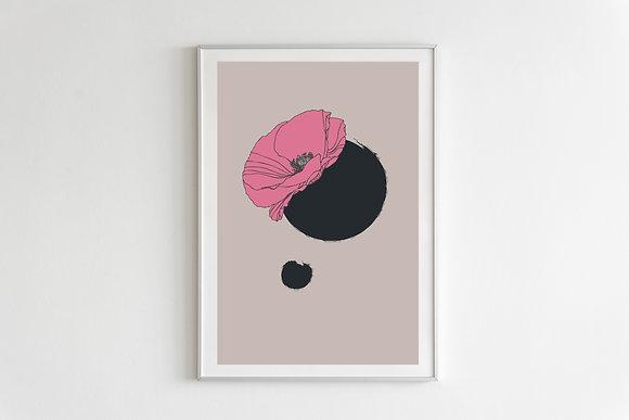 nordic pink poppy on white
